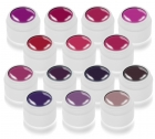 Color Gel 14x5ml Serie Lila-Violetttöne Musterpaket